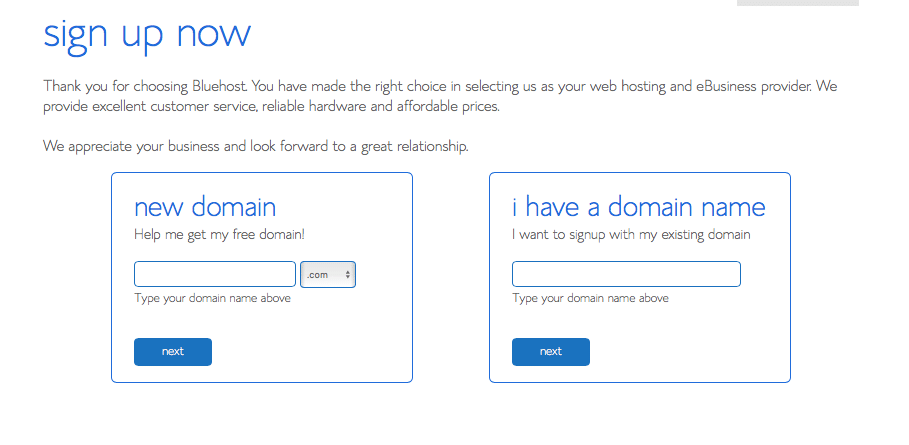 Bluehost choose domain page